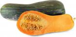 Tykev muškátová Lunga Di Napoli Balení obsahuje 7  semen