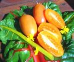 Rajče Orange Banana  Balení obsahuje 10 semen