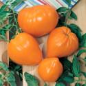 Rajče Orange Strawberry  Balení obsahuje 10 semen