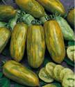 Rajče Green Sausage Balení obsahuje 10 semen