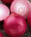 Cibule Red Creole Balení obsahuje 500 semen