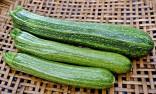 Cuketa San Pasquale Balení obsahuje 10 semen
