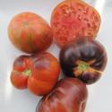Rajče Lovely Lush Balení obsahuje 10 semen