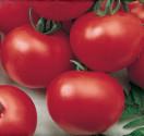 Rajče Dalimil Balení obsahuje 30 semen