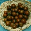Rajče Brown Berry Balení obsahuje 10 semen