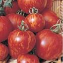 Rajče Tigerella Balení obsahuje 20 semen